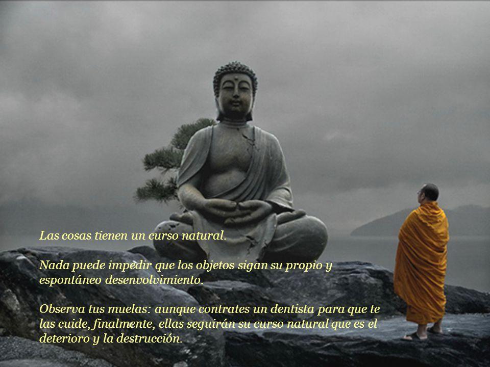 Se refiere a la impermanencia haciendo las siguientes reflexiones:
