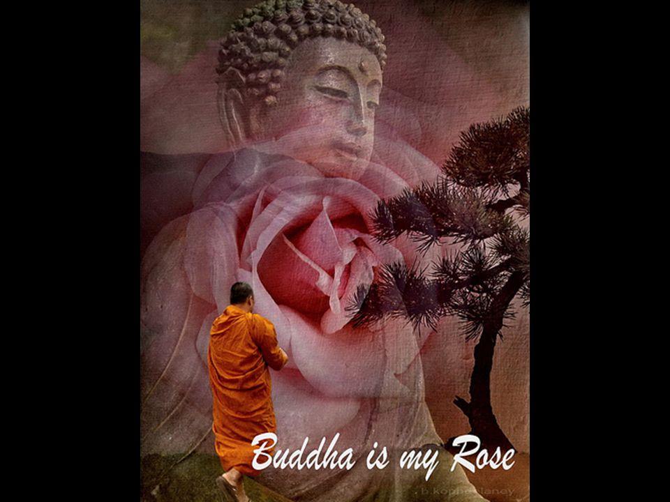 No viajes desesperado tratando de encontrar lugares de mucha espiritualidad. Lo que realmente buscas está dentro de ti. Aunque te sientes en el mismo
