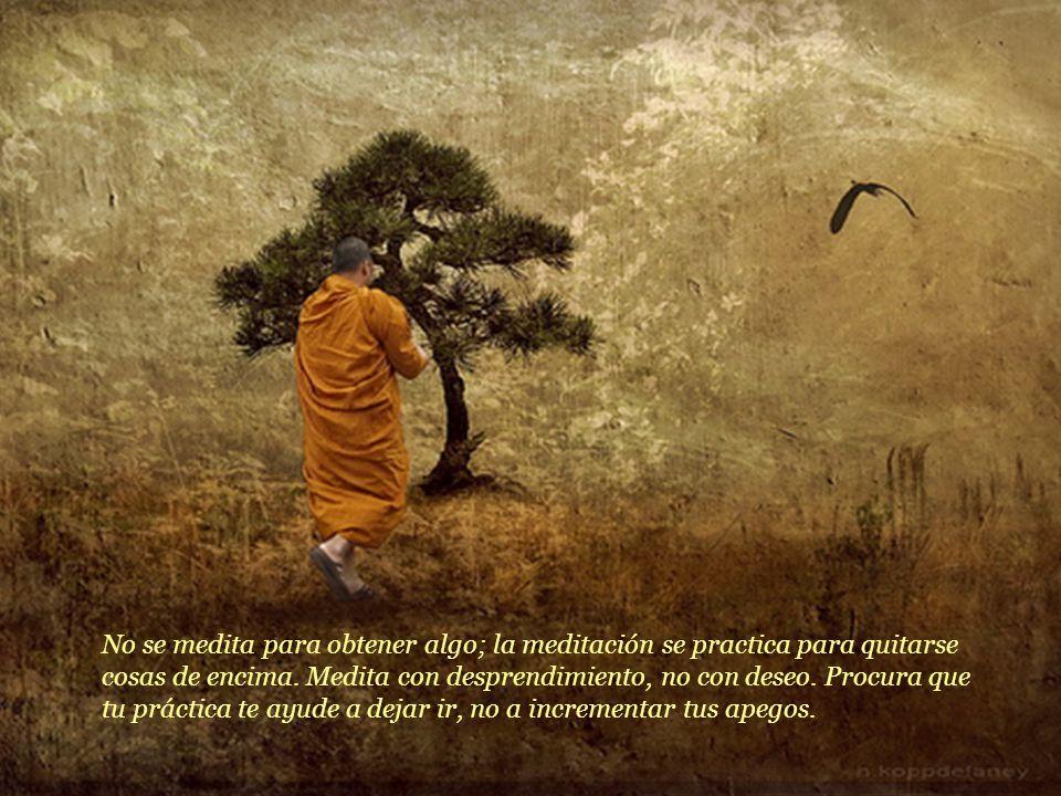 Sobre meditación, expresó: No digas que no tienes tiempo para meditar.