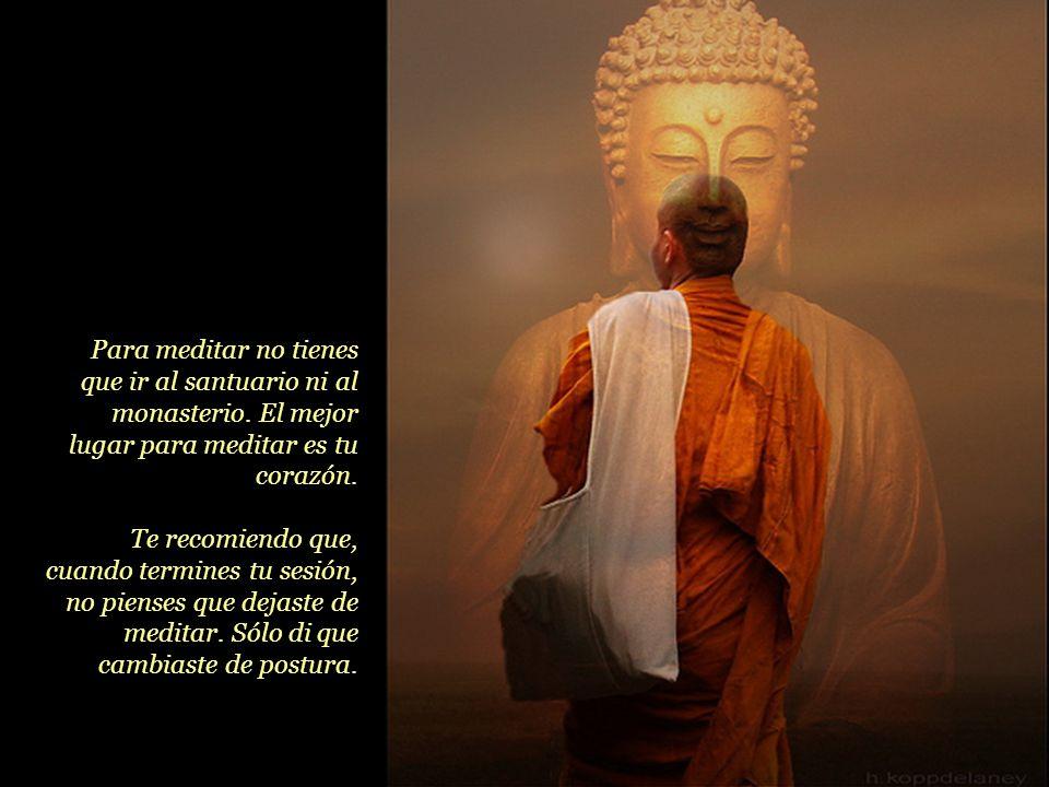 No se medita para obtener algo; la meditación se practica para quitarse cosas de encima. Medita con desprendimiento, no con deseo. Procura que tu prác