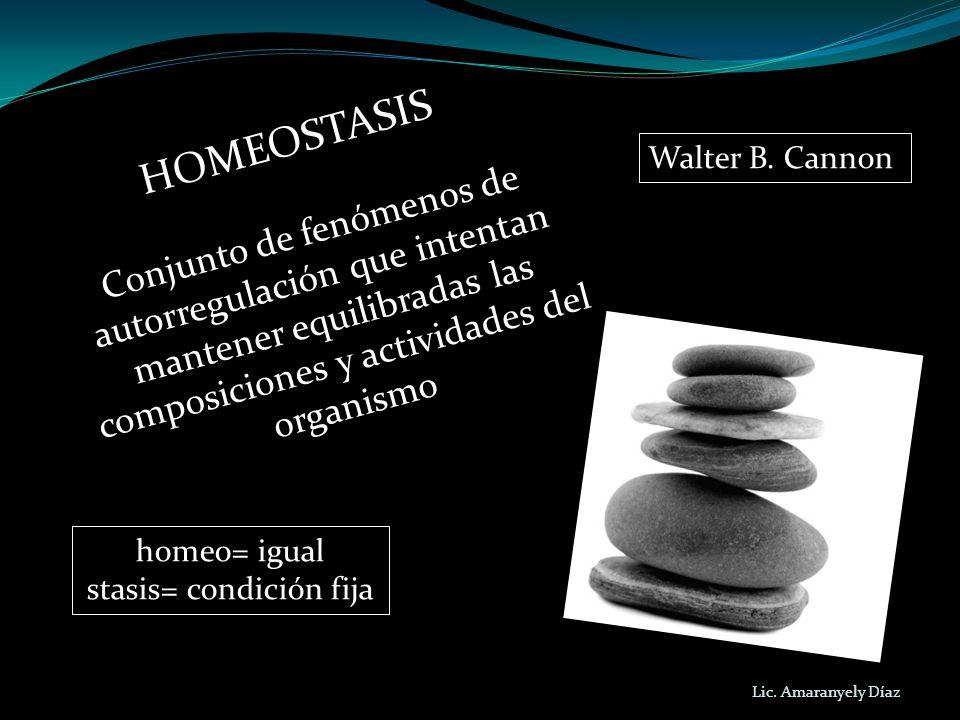 HOMEOSTASIS Conjunto de fenómenos de autorregulación que intentan mantener equilibradas las composiciones y actividades del organismo homeo= igual sta