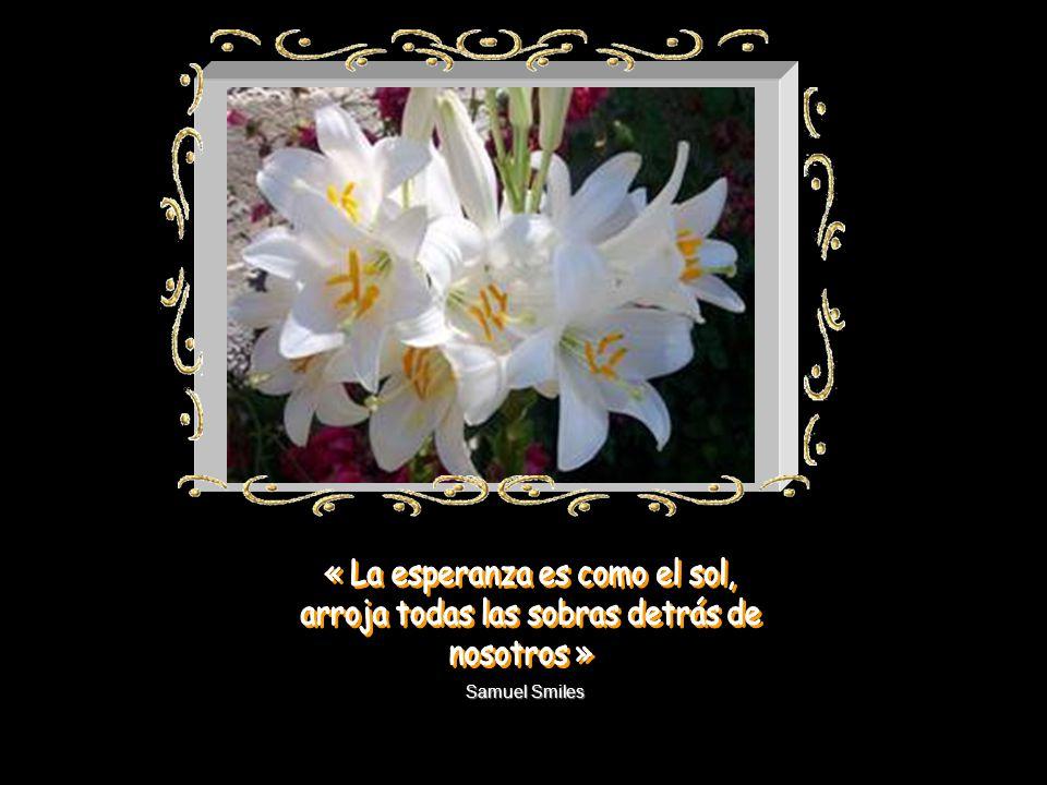 Martín Luther King Sembrando esperanza construimos un mañana mejor. (San Vicente de Paúl)