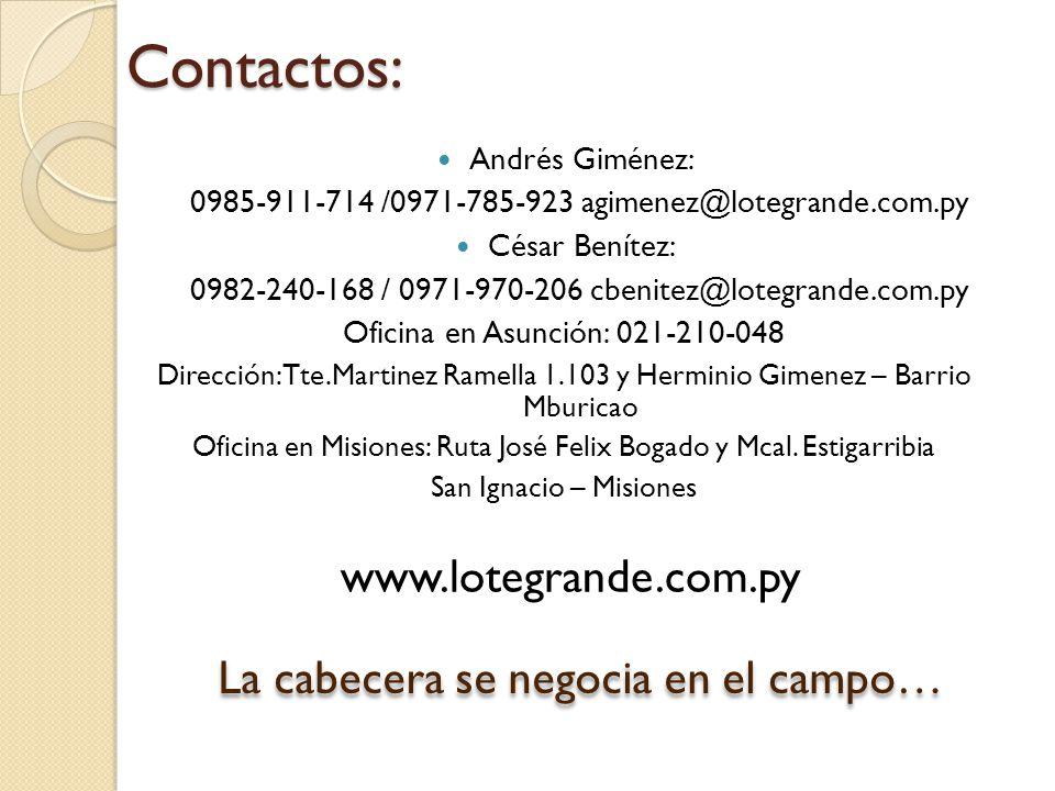 Contactos: Andrés Giménez: 0985-911-714 /0971-785-923 agimenez@lotegrande.com.py César Benítez: 0982-240-168 / 0971-970-206 cbenitez@lotegrande.com.py Oficina en Asunción: 021-210-048 Dirección: Tte.Martinez Ramella 1.103 y Herminio Gimenez – Barrio Mburicao Oficina en Misiones: Ruta José Felix Bogado y Mcal.