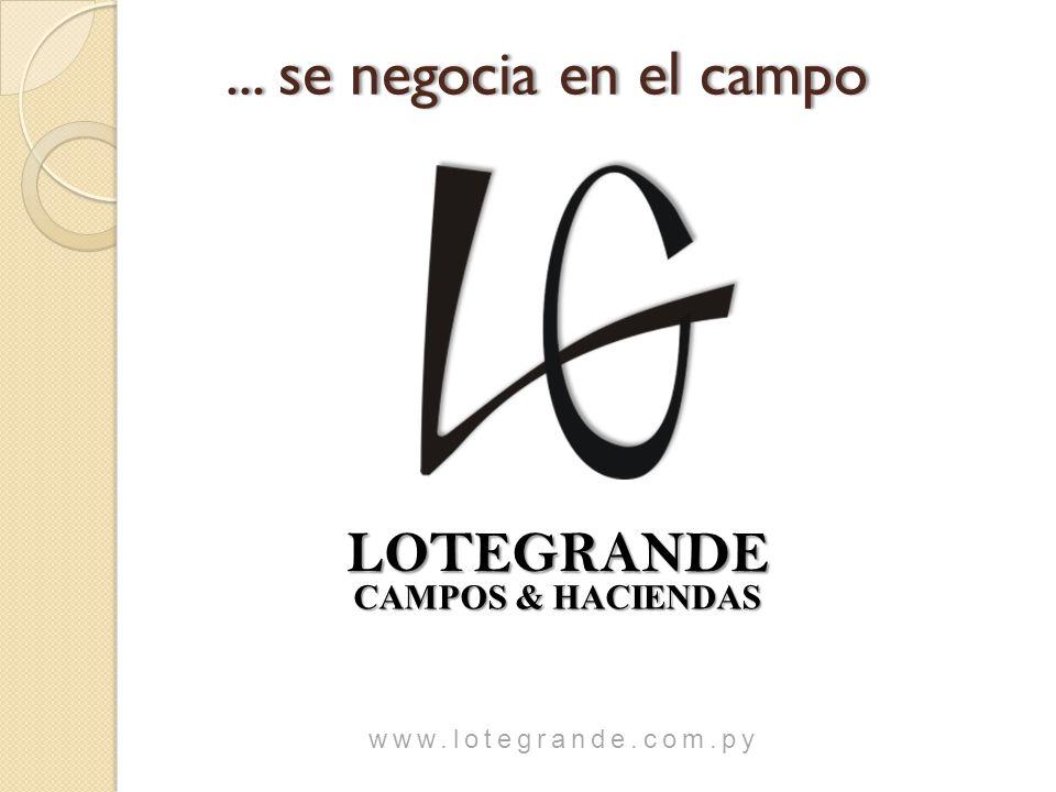 LOTEGRANDE CAMPOS & HACIENDAS CAMPOS & HACIENDAS www.lotegrande.com.py...