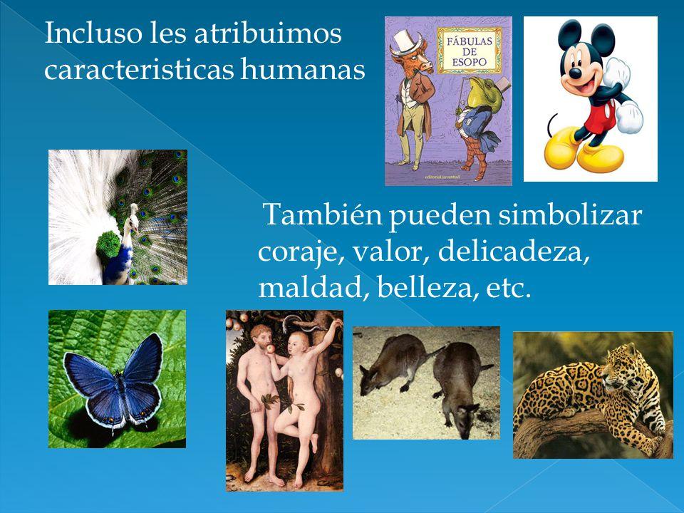 Incluso les atribuimos caracteristicas humanas También pueden simbolizar coraje, valor, delicadeza, maldad, belleza, etc.