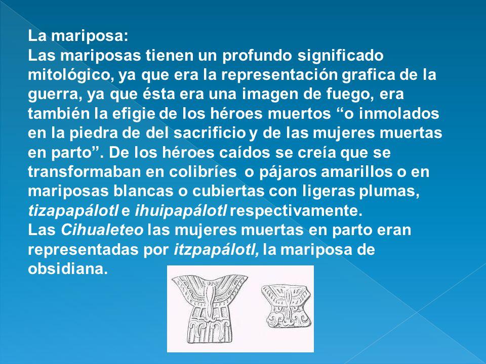 El perro: Éste animal era conocido como : Pek yacer aplanado en el suelo(Mayas de Yucatán).
