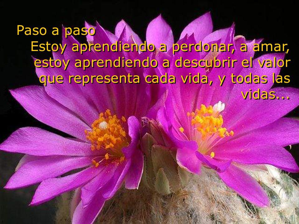 El amor perdona, olvida, extingue todo trazo de dolor... El amor perdona, olvida, extingue todo trazo de dolor...