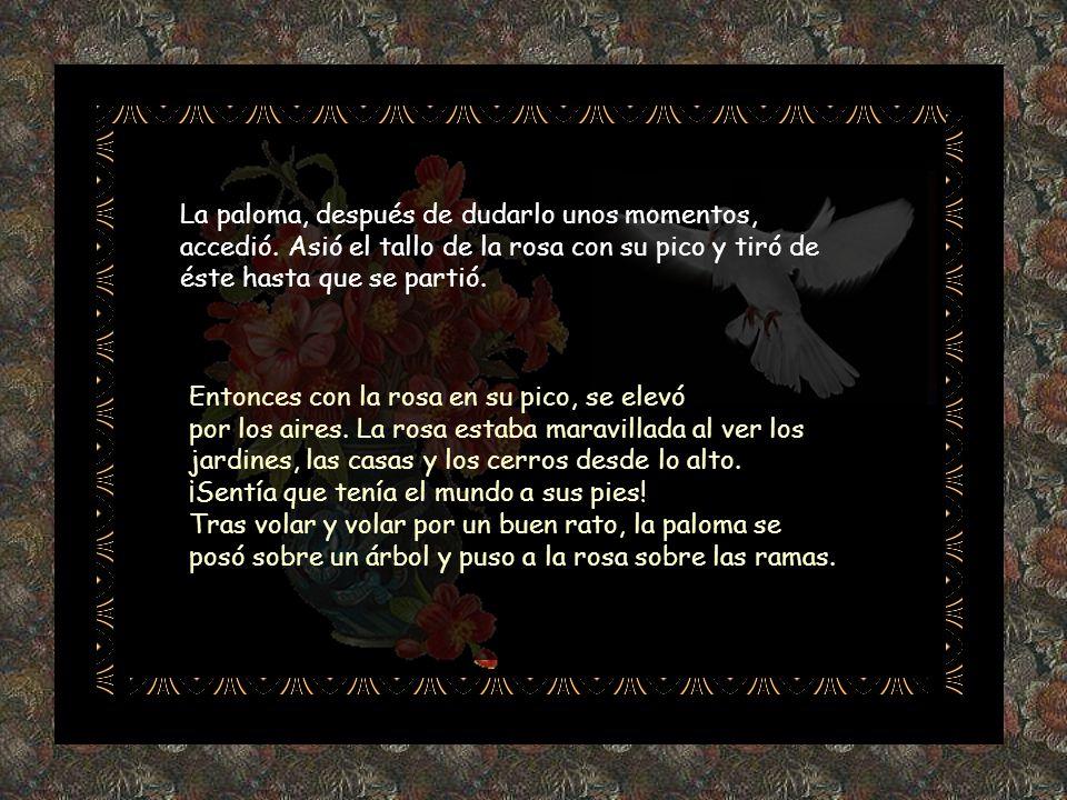 - Sí, pero no soy libre como tú, tú puedes volar adonde quieras, en cambio yo... - Yo soy un ave, tú, una flor, las flores no vuelan. - Lo sé, pero yo
