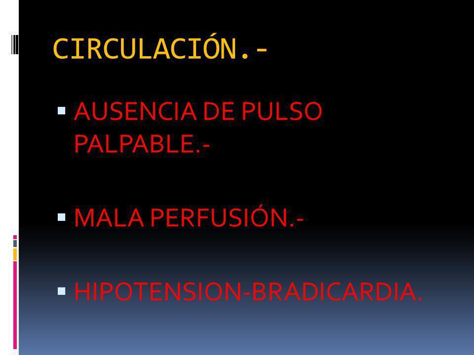 CIRCULACIÓN.- AUSENCIA DE PULSO PALPABLE.- MALA PERFUSIÓN.- HIPOTENSION-BRADICARDIA.