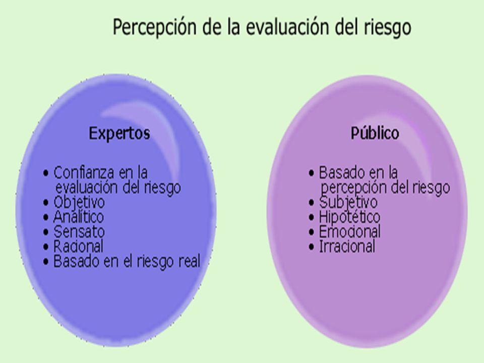 Organización Panamericana de la Salud 10