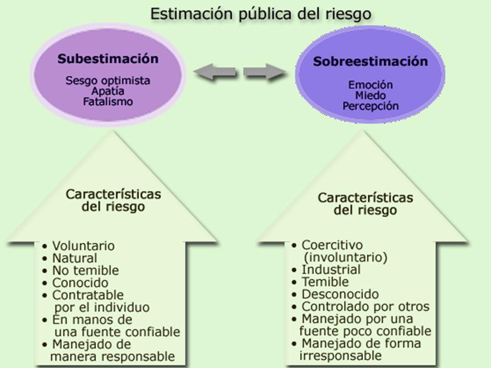 Organización Panamericana de la Salud 13