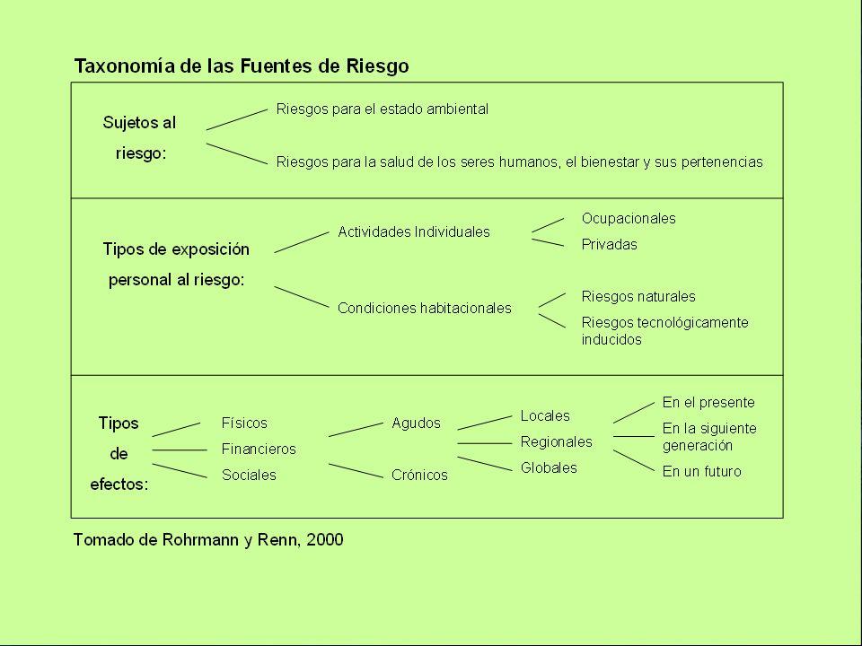 Organización Panamericana de la Salud 16