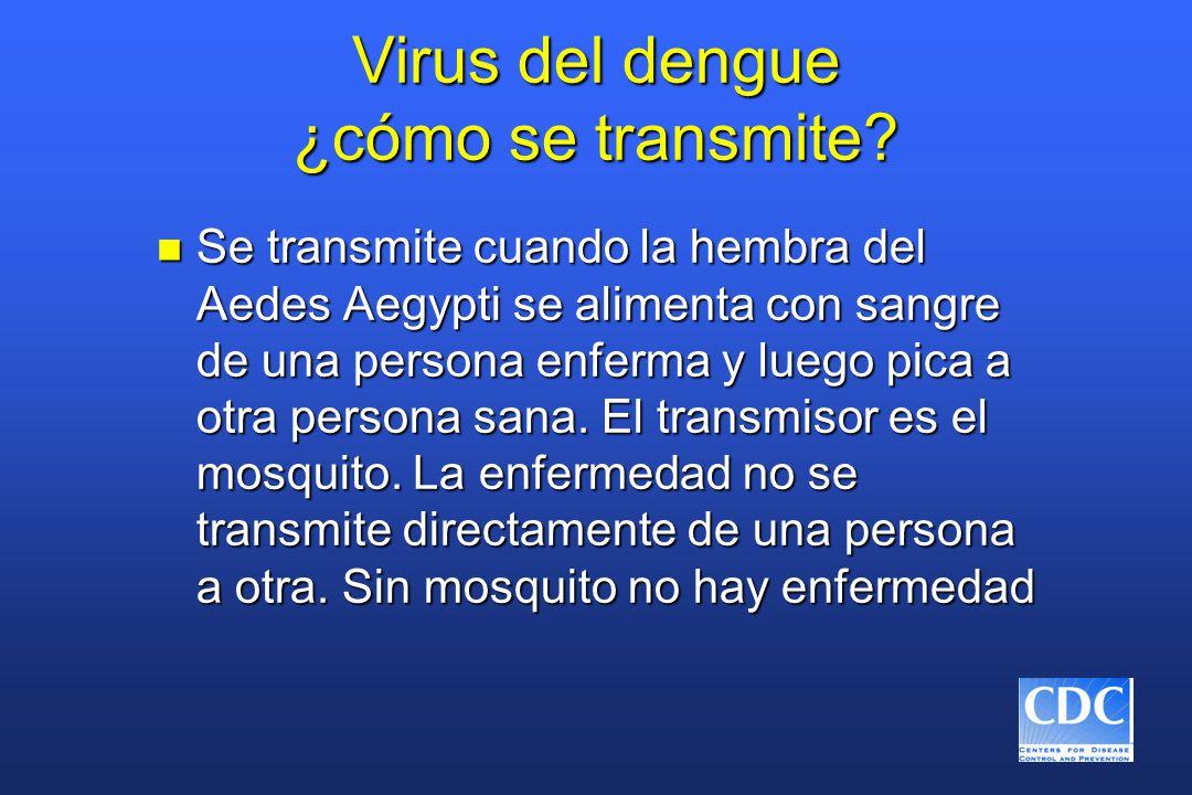 Virus del dengue ¿cómo se transmite? n Se transmite cuando la hembra del Aedes Aegypti se alimenta con sangre de una persona enferma y luego pica a ot