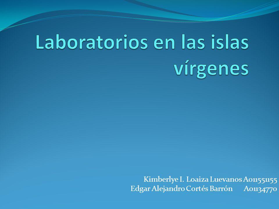 Kimberlye I. Loaiza Luevanos A011551155 Edgar Alejandro Cortés Barrón A01134770