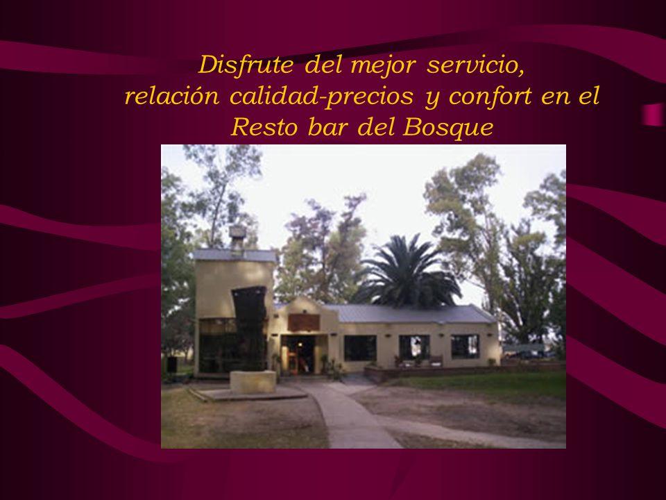 Disfrute del mejor servicio, relación calidad-precios y confort en el Resto bar del Bosque