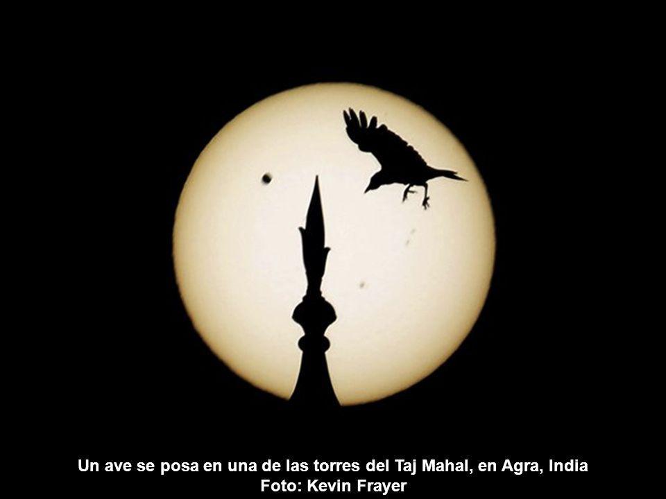 Un visitante toma una fotografía al tránsito de Venus por el sol, en el observatorio Griffith de Los Ángeles.