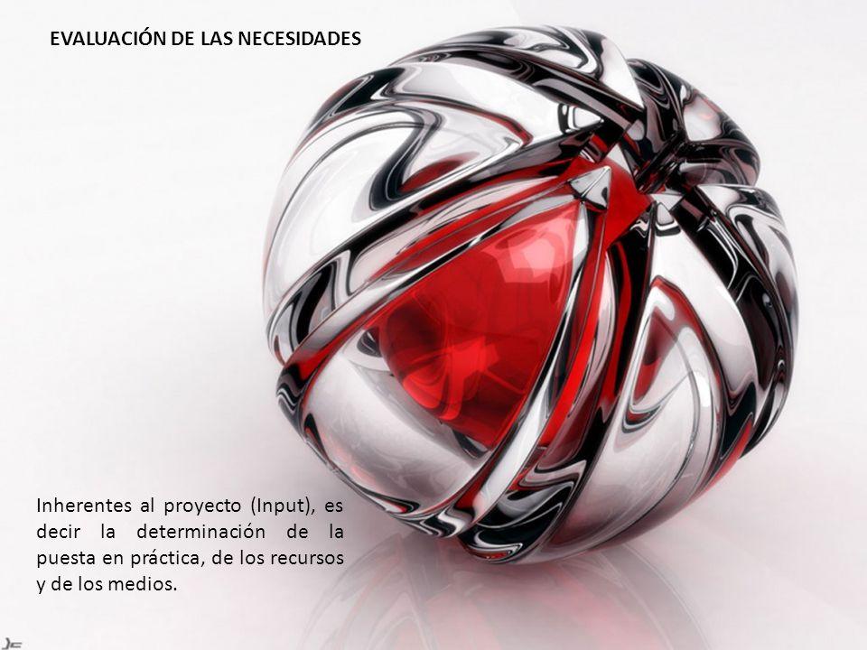 Inherentes al proyecto (Input), es decir la determinación de la puesta en práctica, de los recursos y de los medios. EVALUACIÓN DE LAS NECESIDADES