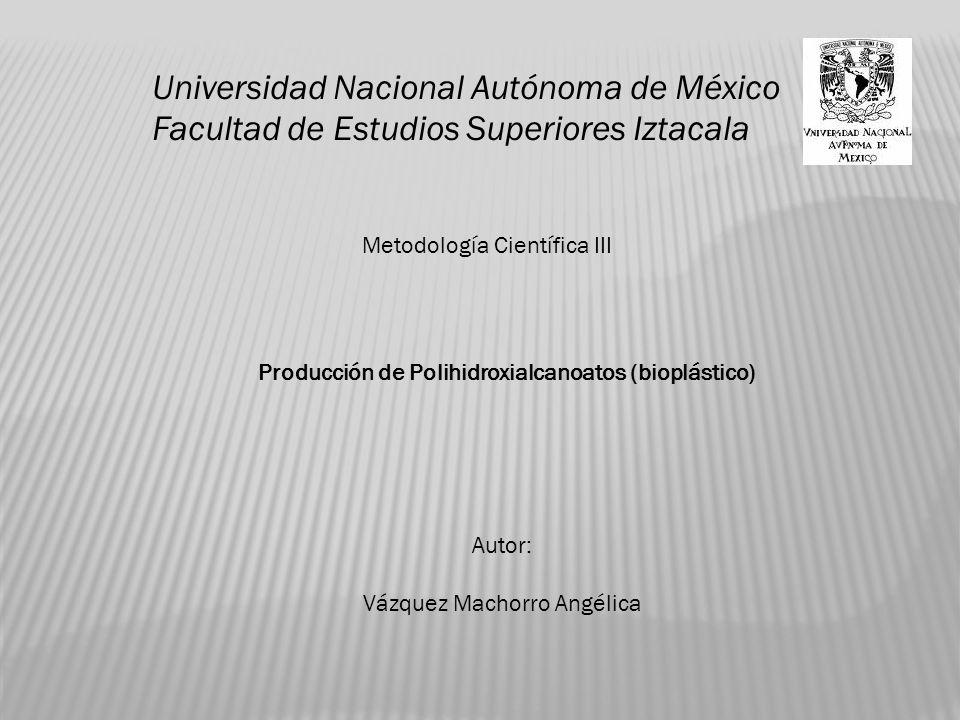 Universidad Nacional Autónoma de México Facultad de Estudios Superiores Iztacala Metodología Científica III Autor: Vázquez Machorro Angélica Producción de Polihidroxialcanoatos (bioplástico)