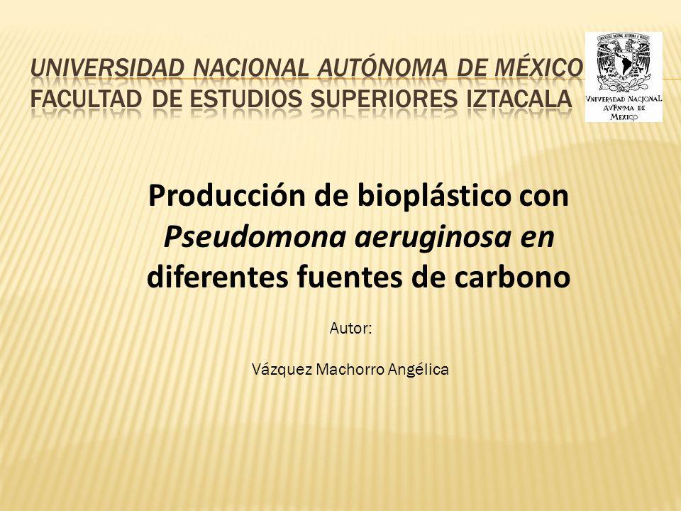 Producción de bioplástico con Pseudomona aeruginosa en diferentes fuentes de carbono Autor: Vázquez Machorro Angélica