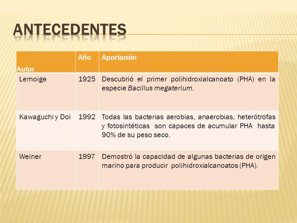 Autor AñoAportación Lemoige1925Descubrió el primer polihidroxialcanoato (PHA) en la especie Bacillus megaterium. Kawaguchi y Doi1992Todas las bacteria