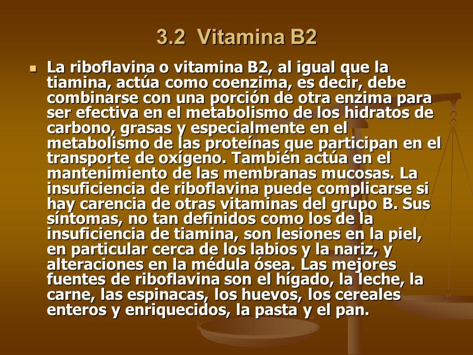 3.2 Vitamina B2 La riboflavina o vitamina B2, al igual que la tiamina, actúa como coenzima, es decir, debe combinarse con una porción de otra enzima para ser efectiva en el metabolismo de los hidratos de carbono, grasas y especialmente en el metabolismo de las proteínas que participan en el transporte de oxígeno.
