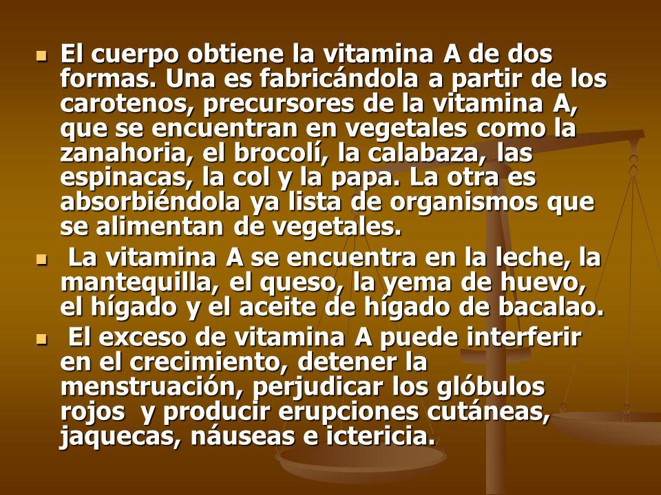 El cuerpo obtiene la vitamina A de dos formas.