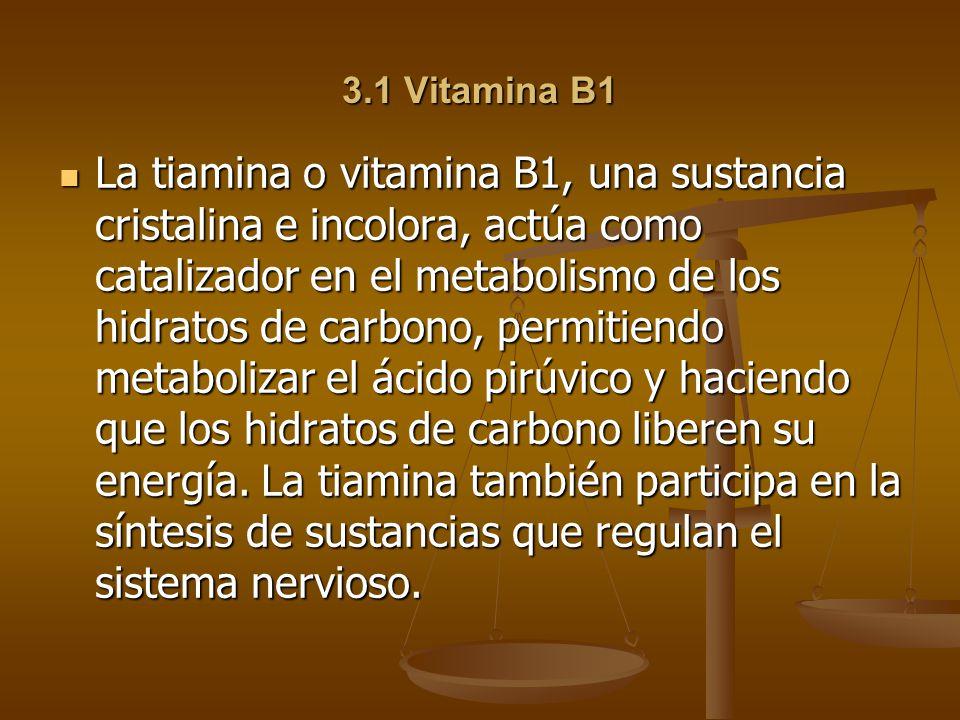 3.1 Vitamina B1 La tiamina o vitamina B1, una sustancia cristalina e incolora, actúa como catalizador en el metabolismo de los hidratos de carbono, permitiendo metabolizar el ácido pirúvico y haciendo que los hidratos de carbono liberen su energía.