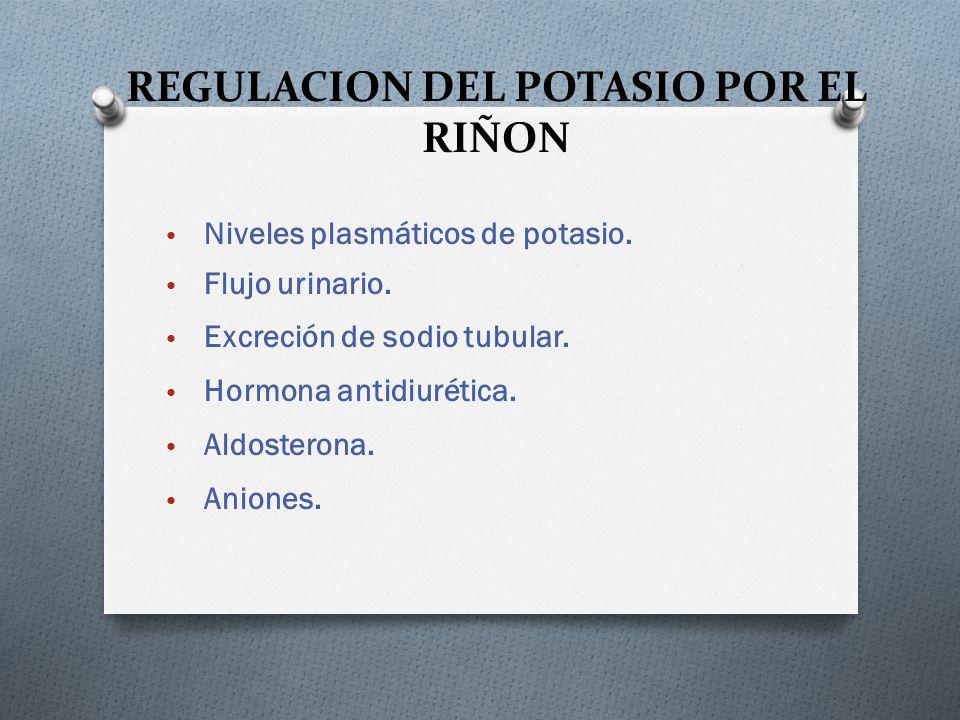 REGULACION DEL POTASIO POR EL RIÑON Niveles plasmáticos de potasio. Flujo urinario. Excreción de sodio tubular. Hormona antidiurética. Aldosterona. An