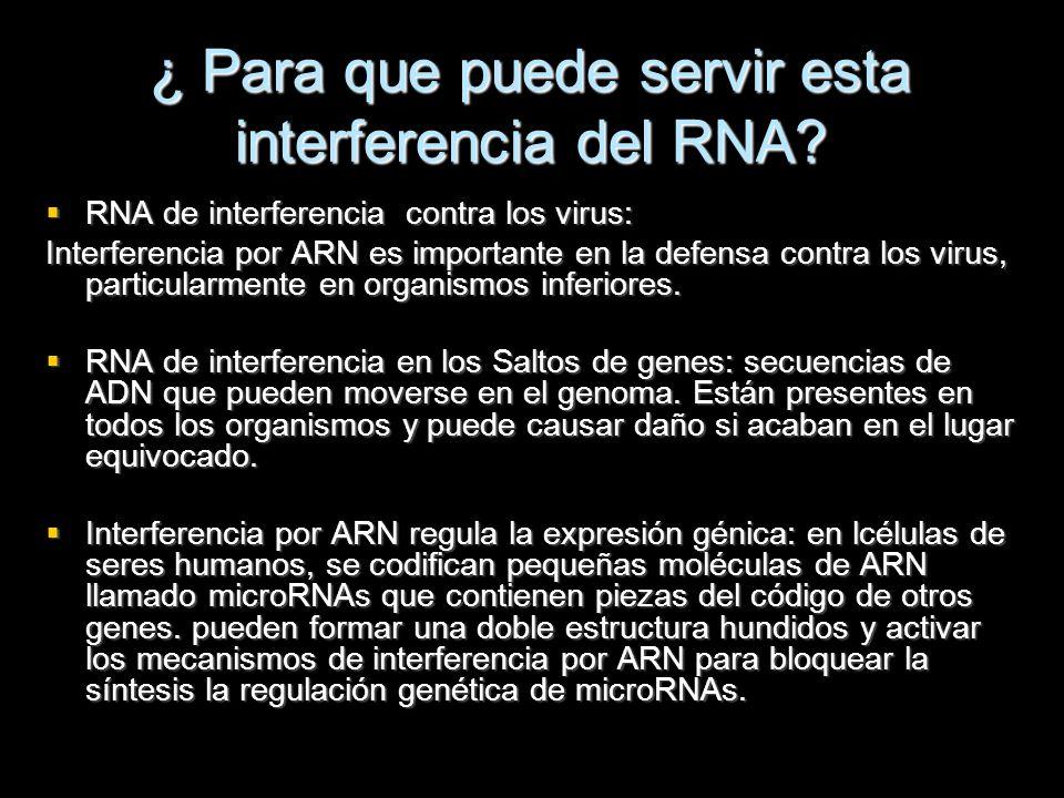 ¿ Para que puede servir esta interferencia del RNA? RNA de interferencia contra los virus: RNA de interferencia contra los virus: Interferencia por AR