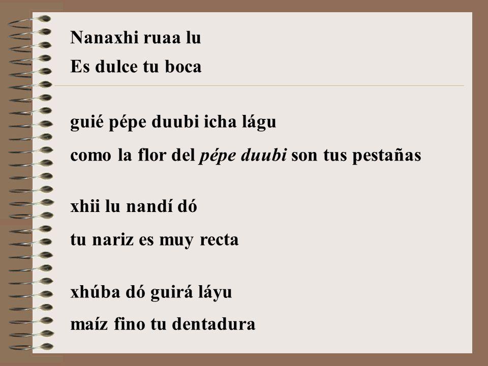 guié pépe duubi icha lágu xhii lu nandí dó xhúba dó guirá láyu como la flor del pépe duubi son tus pestañas tu nariz es muy recta maíz fino tu dentadura Nanaxhi ruaa lu Es dulce tu boca