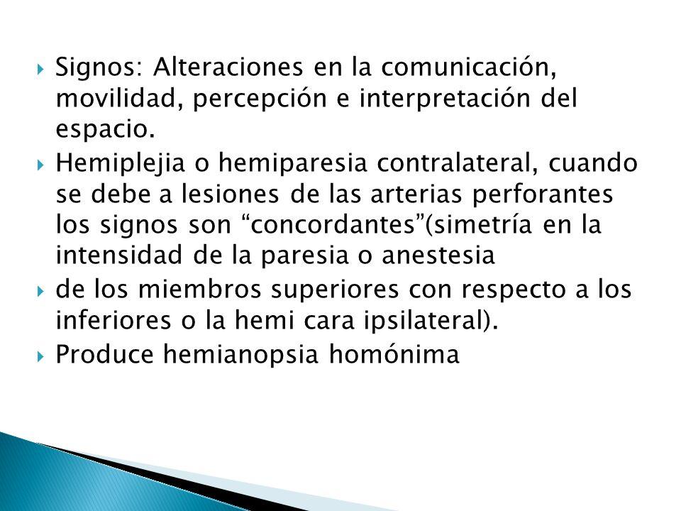 Signos: Alteraciones en la comunicación, movilidad, percepción e interpretación del espacio. Hemiplejia o hemiparesia contralateral, cuando se debe a