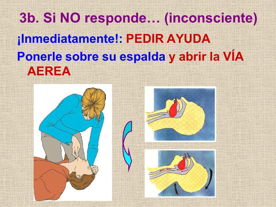 3b. Si NO responde… (inconsciente) ¡Inmediatamente!: PEDIR AYUDA Ponerle sobre su espalda y abrir la VÍA AEREA