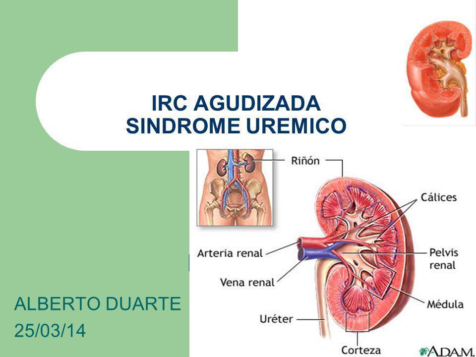 IRC AGUDIZADA SINDROME UREMICO ALBERTO DUARTE 25/03/14