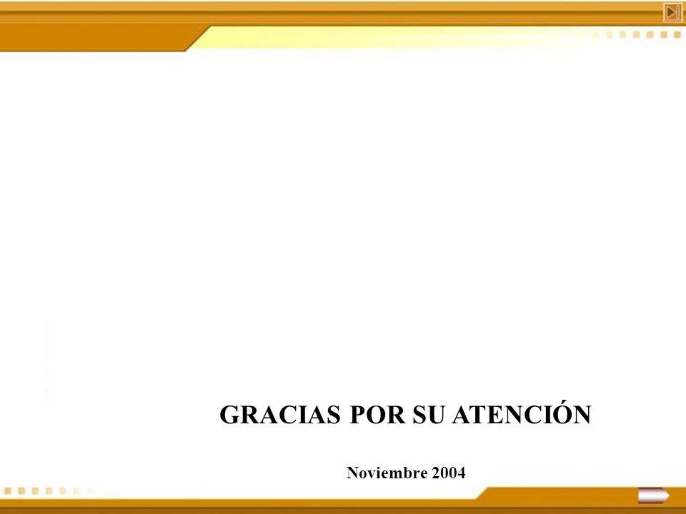 GRACIAS POR SU ATENCIÓN Noviembre 2004