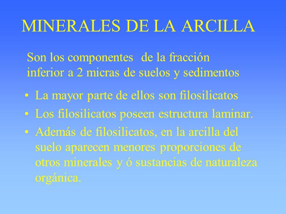 MINERALES DE LA ARCILLA La mayor parte de ellos son filosilicatos Los filosilicatos poseen estructura laminar. Además de filosilicatos, en la arcilla