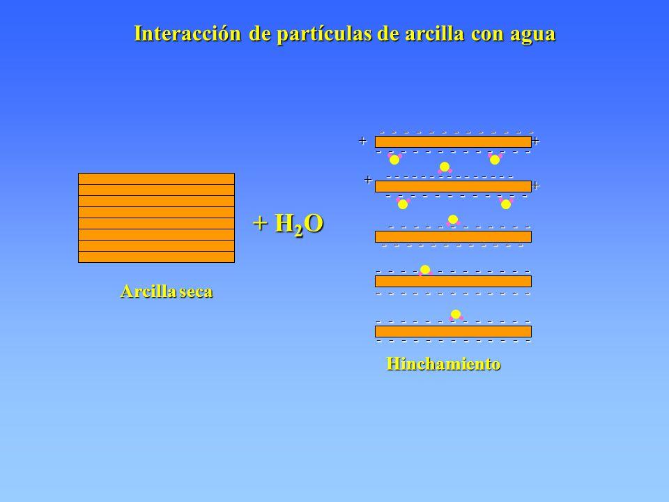+ H 2 O - - - - - - - - - - - - - - - - - - - - - - - - - - - - - - - - - - - - - - - - - - - - - - - - - - - - - - - - - - - - - - - - - - ++ + + Interacción de partículas de arcilla con agua Interacción de partículas de arcilla con agua Arcilla seca Hinchamiento