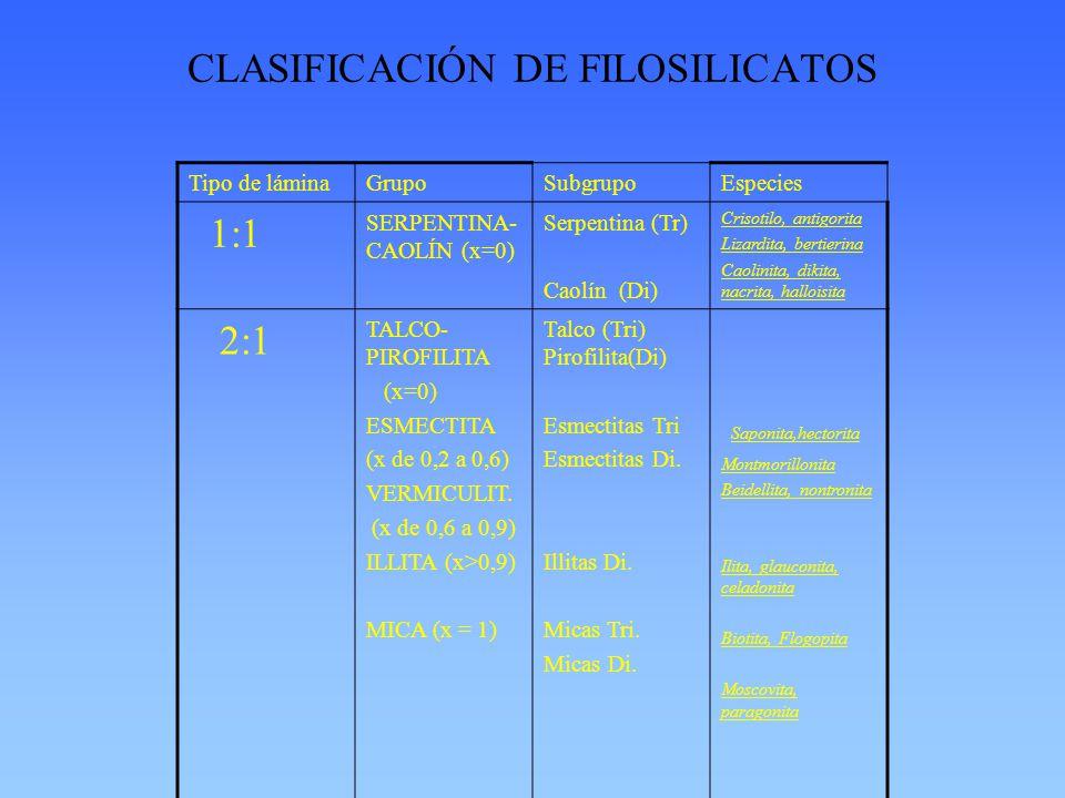 CLASIFICACIÓN DE FILOSILICATOS Tipo de láminaGrupoSubgrupoEspecies 1:1 SERPENTINA- CAOLÍN (x=0) Serpentina (Tr) Caolín (Di) Crisotilo, antigorita Lizardita, bertierina Caolinita, dikita, nacrita, halloisita 2:1 TALCO- PIROFILITA (x=0) ESMECTITA (x de 0,2 a 0,6) VERMICULIT.