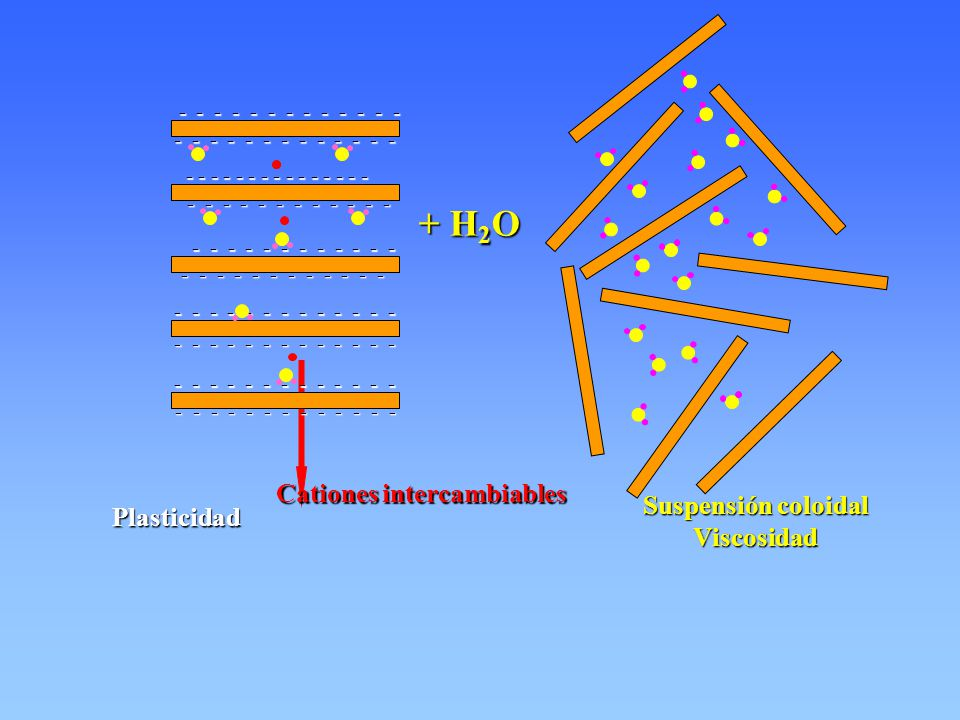 I I II I II II I I II I II II I II I I IIIII I II II II I II I II IIII II IIII II I II II II I I I Base rectangular EJE B EJE A OH inferiores, 6 Cationes, 6 OH superiores,6 Mg 6 (OH) 12