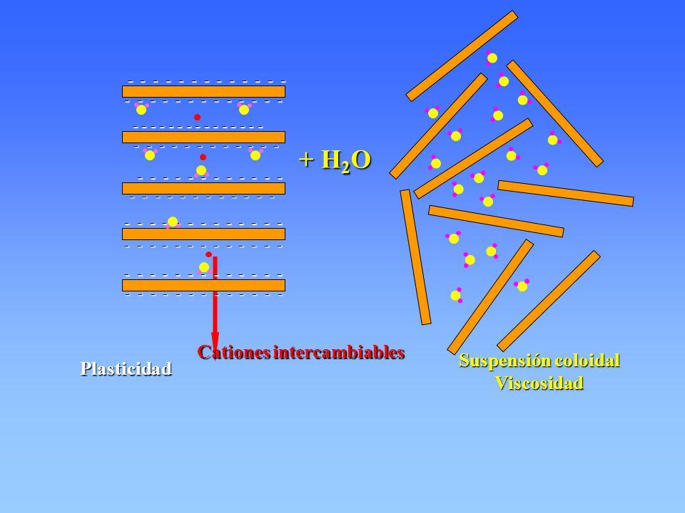 Cationes intercambiables + H 2 O - - - - - - - - - - - - - - - - - - - - - - - - - - - - - - - - - - - - - - - - - - - - - - - - - - - - - - - - - - -