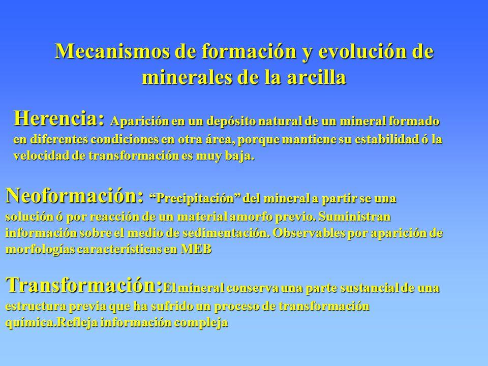Mecanismos de formación y evolución de minerales de la arcilla Herencia: Aparición en un depósito natural de un mineral formado en diferentes condiciones en otra área, porque mantiene su estabilidad ó la velocidad de transformación es muy baja.