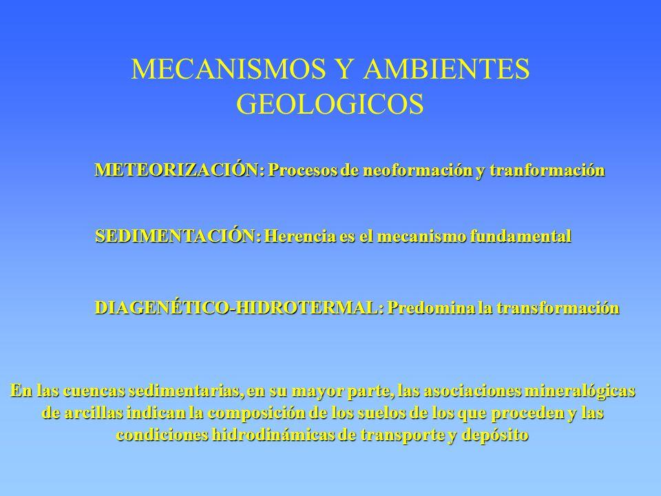 MECANISMOS Y AMBIENTES GEOLOGICOS METEORIZACIÓN: Procesos de neoformación y tranformación SEDIMENTACIÓN: Herencia es el mecanismo fundamental DIAGENÉTICO-HIDROTERMAL: Predomina la transformación En las cuencas sedimentarias, en su mayor parte, las asociaciones mineralógicas de arcillas indican la composición de los suelos de los que proceden y las condiciones hidrodinámicas de transporte y depósito