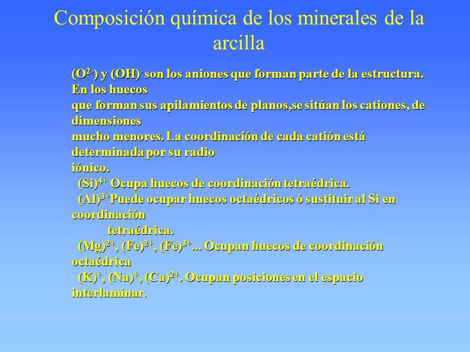 Composición química de los minerales de la arcilla (O 2- ) y (OH) - son los aniones que forman parte de la estructura. En los huecos que forman sus ap