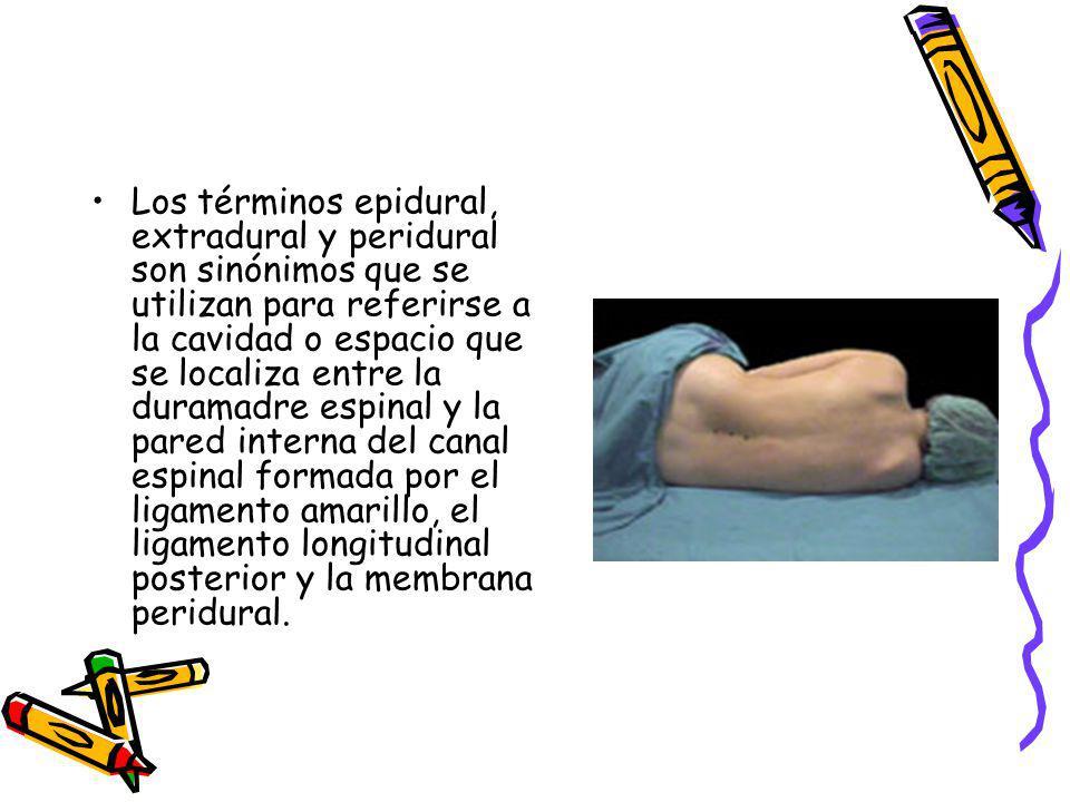 Los términos epidural, extradural y peridural son sinónimos que se utilizan para referirse a la cavidad o espacio que se localiza entre la duramadre e