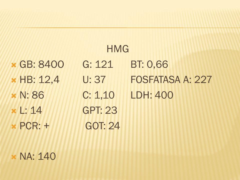 HMG GB: 84OOG: 121BT: 0,66 HB: 12,4U: 37FOSFATASA A: 227 N: 86C: 1,10LDH: 400 L: 14GPT: 23 PCR: + GOT: 24 NA: 140