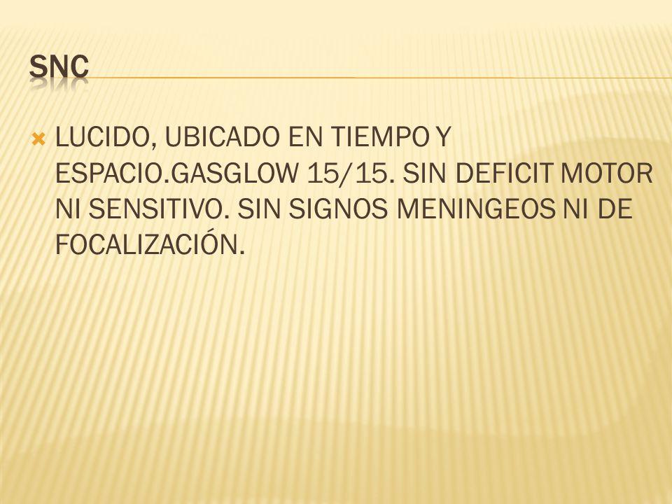 LUCIDO, UBICADO EN TIEMPO Y ESPACIO.GASGLOW 15/15. SIN DEFICIT MOTOR NI SENSITIVO. SIN SIGNOS MENINGEOS NI DE FOCALIZACIÓN.