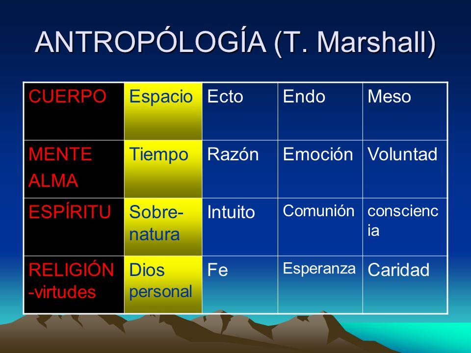 ANTROPÓLOGÍA (T.