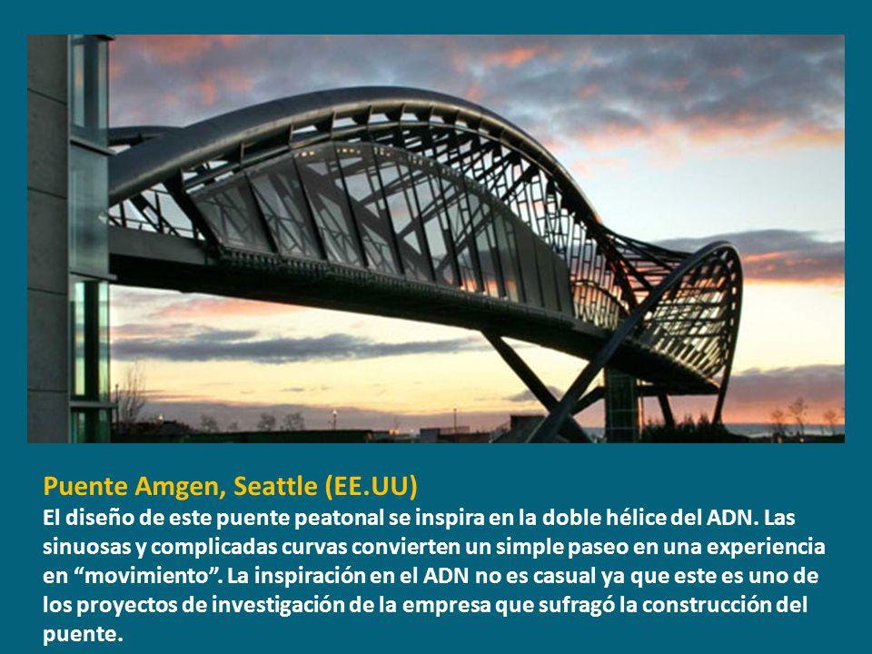 Puente Amgen, Seattle (EE.UU) El diseño de este puente peatonal se inspira en la doble hélice del ADN. Las sinuosas y complicadas curvas convierten un