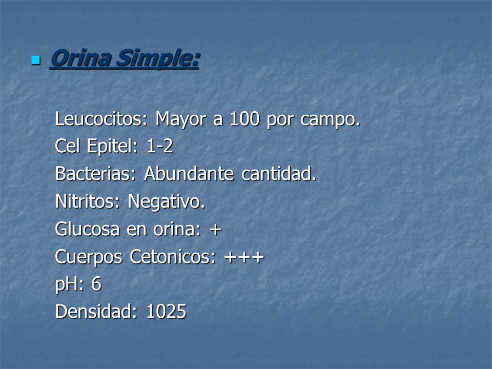 Orina Simple: Orina Simple: Leucocitos: Mayor a 100 por campo. Cel Epitel: 1-2 Bacterias: Abundante cantidad. Nitritos: Negativo. Glucosa en orina: +