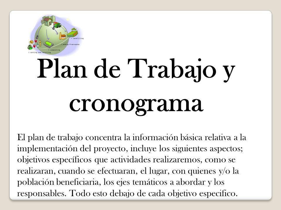 Plan de Trabajo y cronograma El plan de trabajo concentra la información básica relativa a la implementación del proyecto, incluye los siguientes aspe