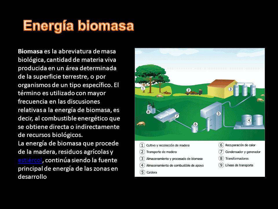 Biomasa es la abreviatura de masa biológica, cantidad de materia viva producida en un área determinada de la superficie terrestre, o por organismos de